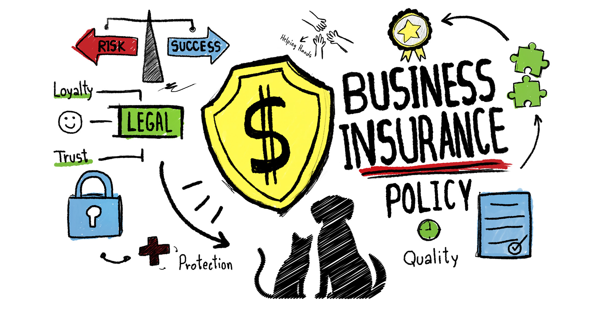 4 Types of Business Insurance Your Pet Care Business Needs