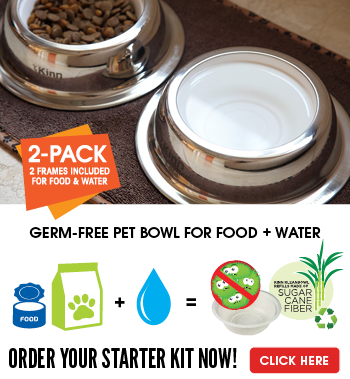 The Healthier Pet Bowl